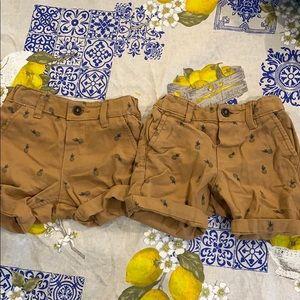 H&M 4-6 mo and 6-9 mo Pineapple shorts